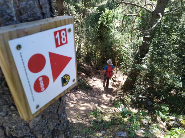 Ascension al Puy Arcol 18